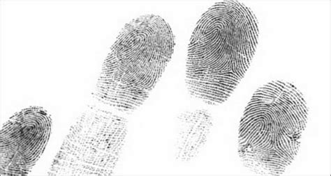 finger prints a novel monsanto fingerprints found all attack on organic