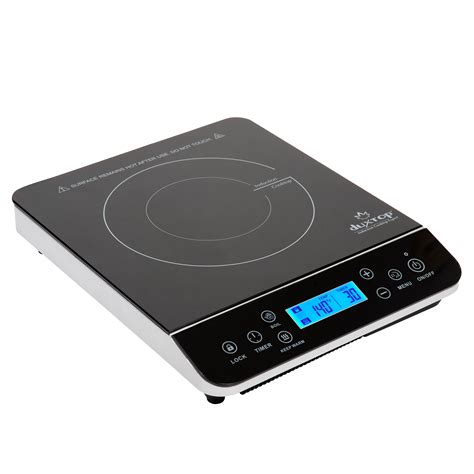 induction cooking burner the best portable induction burner of 2017 reviews
