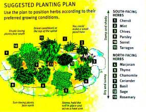 Herb Garden Layout How To Grow Your Own Herbs Planning A Herb Garden