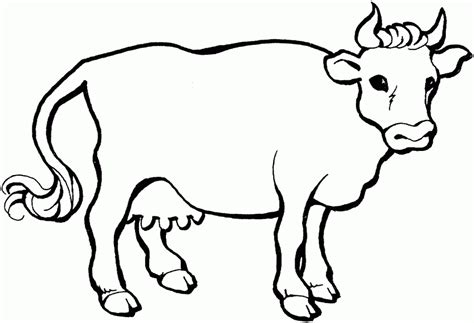 coloring pages cow face cow face coloring page coloring home