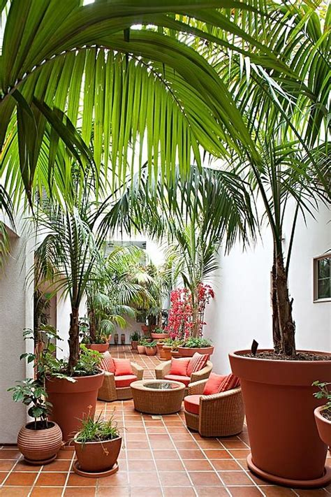 tropical patio design best 20 tropical patio ideas on tropical