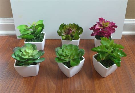 mini potted plants mini potted artificial unkillable succulents plants with