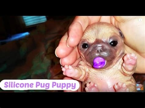 silicone baby pug silicone pug puppy and silicone mini baby collection so pug