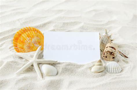 libro arena blanca libro blanco en blanco con las estrellas de mar y las conchas marinas en la arena blanca foto de