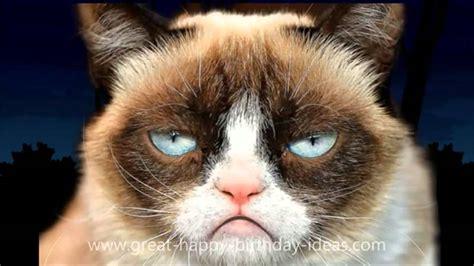 cat song happy birthday to animals free ecard