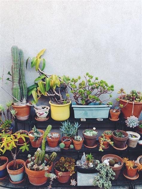 laure joliet x vsco cam 174 x vsco grid blog vsco 61 best indoor gardening images on pinterest gardening