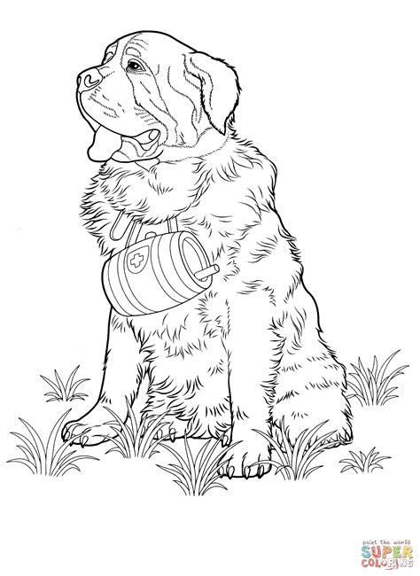 st bernard coloring page free printable coloring pages