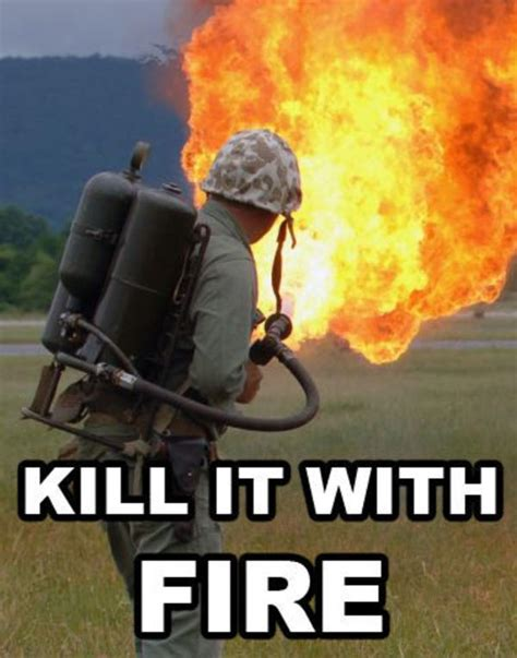 Kill It With Fire Meme - image 6997 kill it with fire know your meme