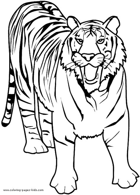coloring pages lions tigers growling tiger color page