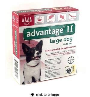 advantage for dogs 21 55 lbs advantage ii flea for large dogs 21 55 lbs 4pk