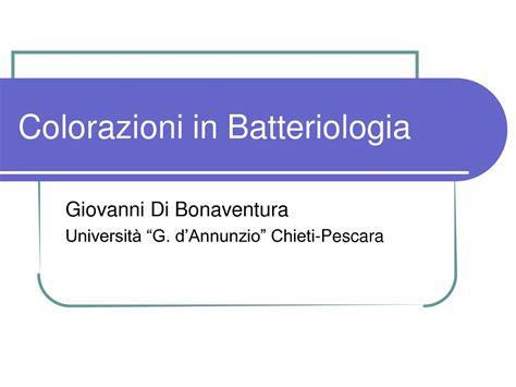 dispense microbiologia colorazioni batteriche dispense
