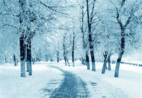 the winter does the winter season cause depression siowfa15