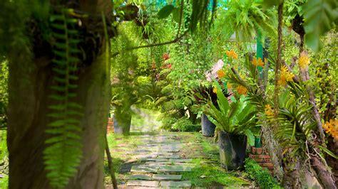Garden Ho by Saigon Zoo And Botanic Garden Ho Chi Minh City Expedia