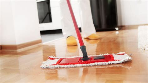 house cleaning services pet and home care