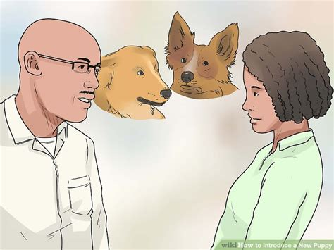 introducing a new puppy to another 5 ways to introduce a new puppy wikihow