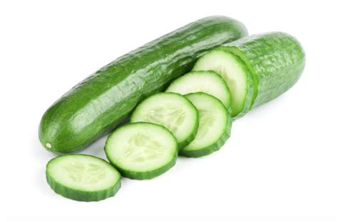 dogs eat cucumbers can dogs eat cucumber the healthy vegetables treats for your pets