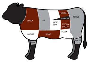 parts of a beef cow diagram ngo your meal all the different cuts of the cow part 1