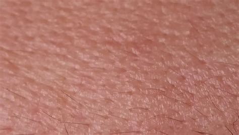 human skin closeup macro dolly stock footage 10828757 skin texture footage page 2 stock