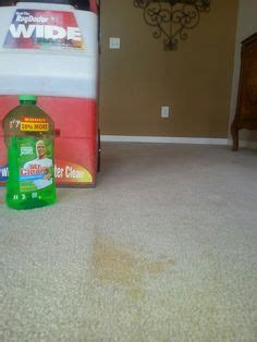 rug doctor water not coming out 1000 ideas about rug doctor on carpet cleaning machines carpet cleaners and steam