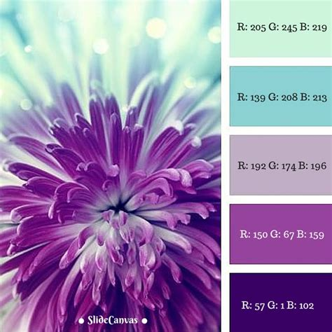 get color code from image 25 unique rgb code ideas on colour hex codes