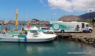 Rent Boat Honolulu Dolphin Swimming Tours In Honolulu Hawaii Getmyboat