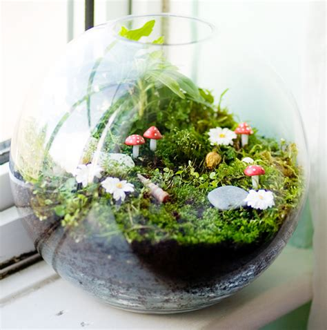 25 adorable miniature terrarium ideas for you to try