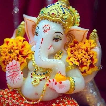 cute ganesha images gallery   gallery of god