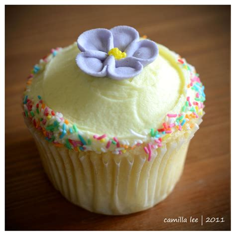 Decorative Cupcakes by A Whimsical Affair Cupcake Decorating Class