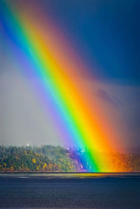 what is the real color of the sky 1784 best images about rainbows on tongue