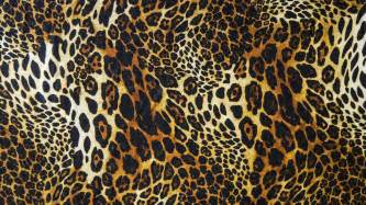 Print A Wallpaper Leopard Print Wallpapers Hd Pixelstalk Net