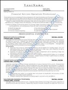 professional resume format financial services operation professional resume sle