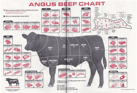 diagram of steak cuts anatomy johnny prime