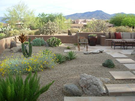 desert landscape ideas for backyards 25 best ideas about arizona landscaping on