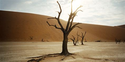 Most Beautiful States deadvlei is the most beautiful dead place you will ever see