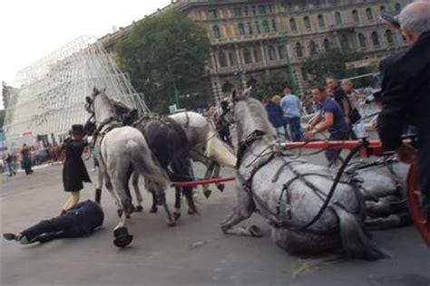 carrozza a cavalli turista travolto dai cavalli in fugaparte l esposto sulla
