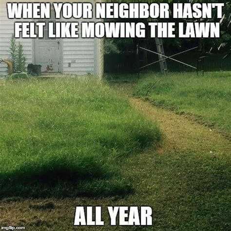 Turf Meme - we bet there are garden gnomes lost in there somewhere if