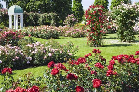 rose themed landscape rose garden design bookmark 7600