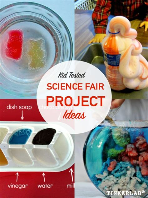 A Place Project Science Fair Project Ideas Tinkerlab