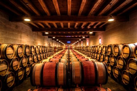 the barrel room vintage wine staring down the barrel types of wine barrels and how