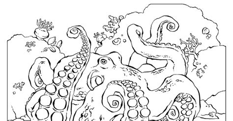 National Geographic Coloring Book Animals Pictures Links National Geographic Coloring Pages