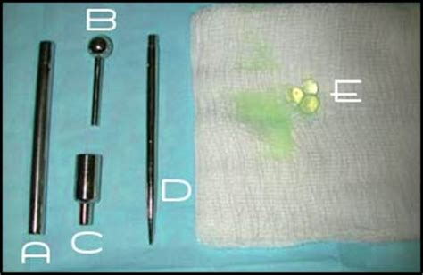 penile beading a safer form of beading bme piercing