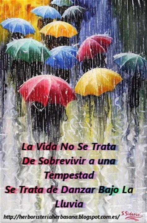 imagenes de feliz sabado lluvioso herboristeria herbasana canals feliz d 205 a lluvioso