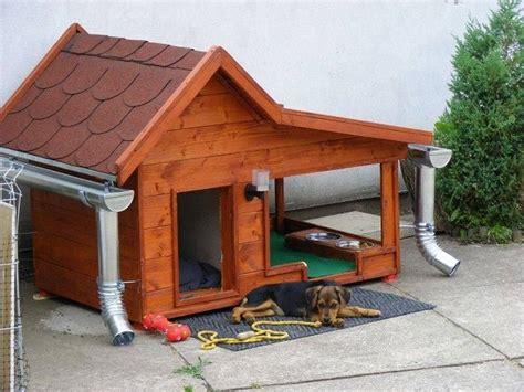 cani da giardino cucce per cani da esterno idee green