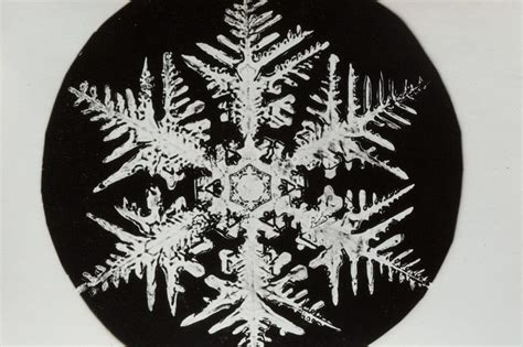 bentley snowflake pictures the pioneering snowflake photographs of a obsessive