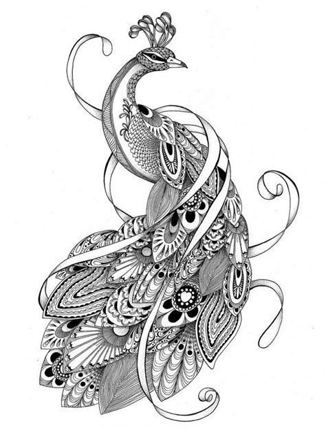 animal coloring pages peacock colouring pages adult coloring pages of the tangled