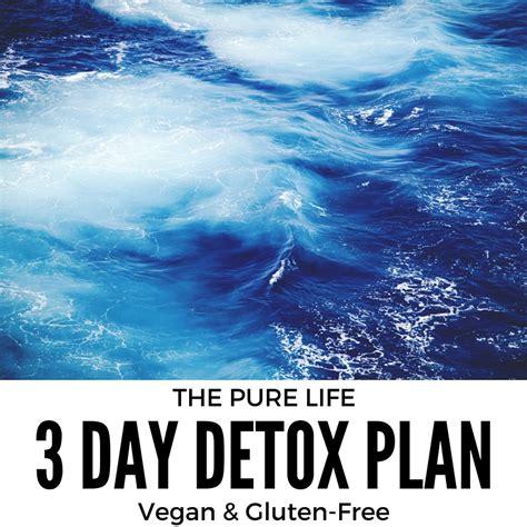 3 Day Detox Plan Vegan by 3 Day Detox Plan