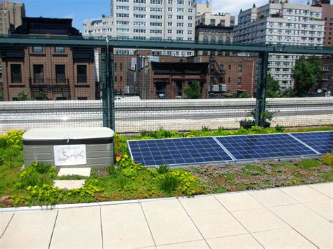 solar roofs with gardens might become part of nyc school