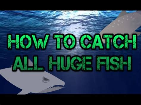 cat goes fishing: how to catch all huge fish #1386 on go drama