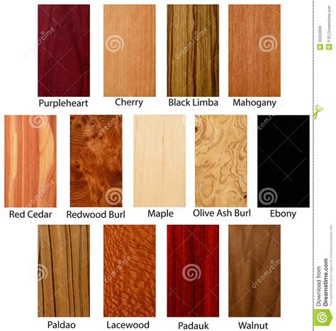 Classic 6 Floor Plan wood textures royalty free stock images image 35053009