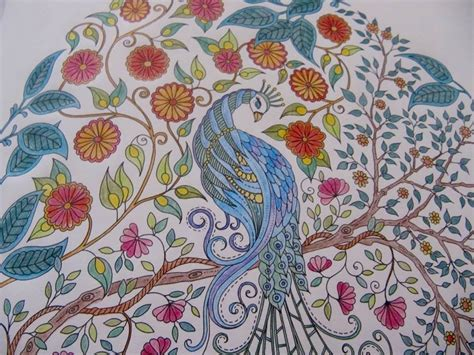 secret garden colouring in book nz johanna basford s secret garden and enchanted forest
